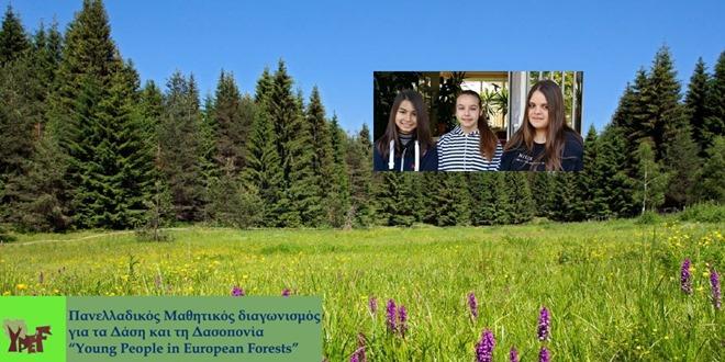 Νικήτρια σε πανελλαδικό διαγωνισμό για τα Δάση και τη Δασοπονία η ομάδα του σχολείου μας